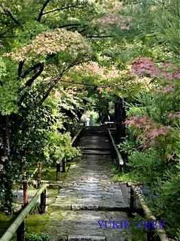 京都16.jpg
