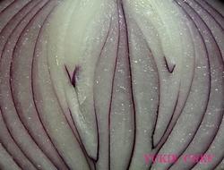 紫たまねぎ.jpg